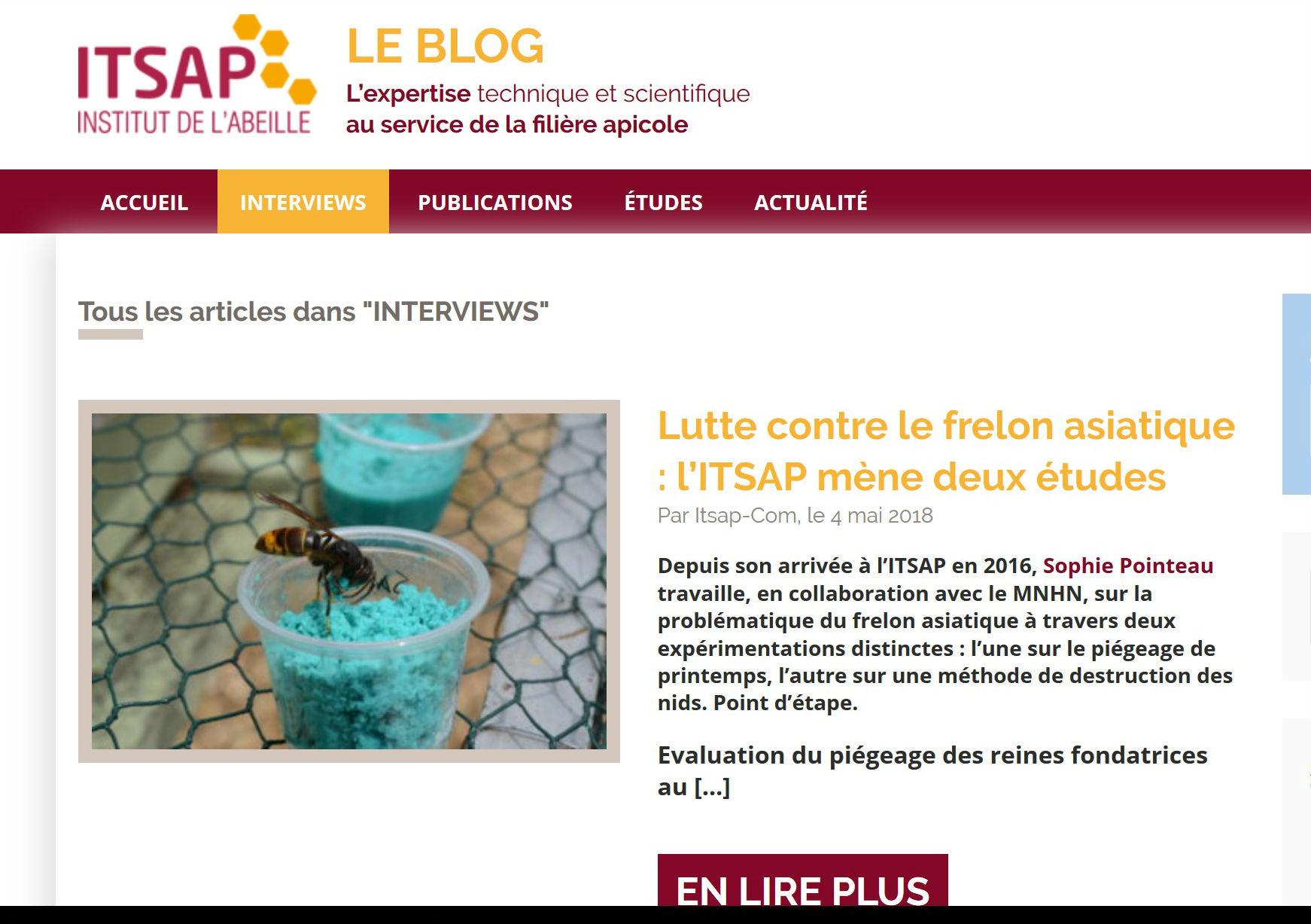 blog Itsap